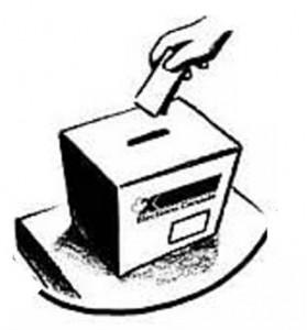urna elezioni